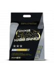 Giant Mass Gainer