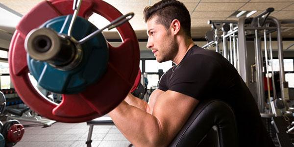 biceps slut